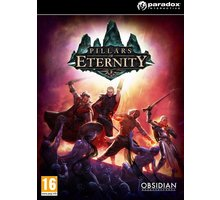 Pillars of Eternity - Hero Edition (PC) - PC - 165049
