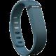Fitbit příslušenství pro Flex náhradní pásek - Slate - Small
