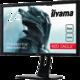 """iiyama G-Master GB2488HSU - LED monitor 24"""""""