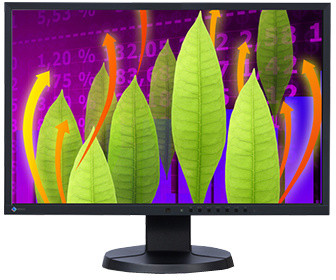 EIZO EV2216WFS-BK - LED monitor 22""