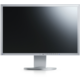 EIZO FlexScan EV2436WFS-GY - LED monitor 24""