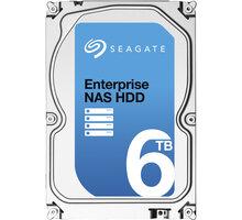 Seagate Enterprise NAS - 6TB - ST6000VN0001