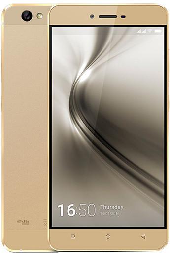 gold (3).jpg