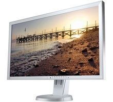 EIZO FlexScan EV2736WFS-GY - LED monitor 27""