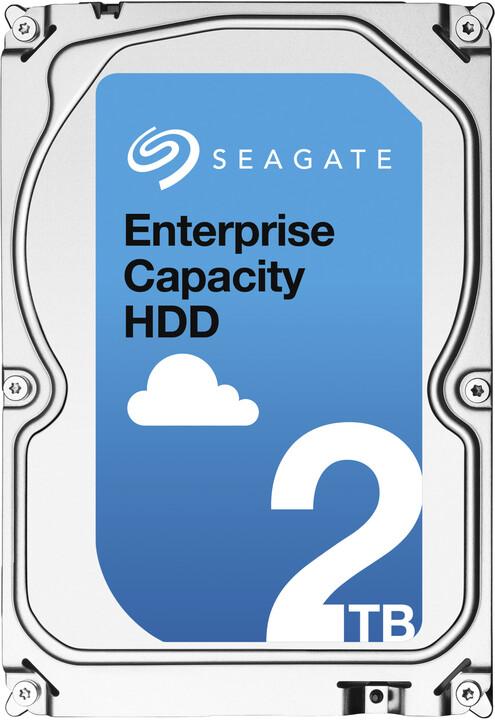 Seagate Enterprise - 2TB