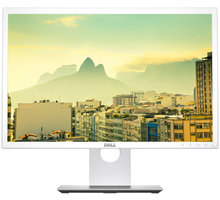 "Dell P2217 Professional - LED monitor 22"" - P2217Wh-WHITE"
