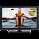 GoGEN TVF 22P266T - 56cm  + Flashdisk A-data 16GB v ceně 200 kč