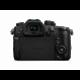 Panasonic Lumix DMC-GH5 + Leica DG 12-60mm f/2.8-4