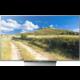 Sony KD-65XD8577 - 164cm  + Bezdrátový reproduktor Sony SRS-XB2 v ceně 2500 kč + Garance DVB-T2