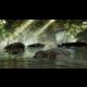 Dead Island Riptide - X360