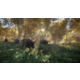 theHunter: Call of the Wild (Xbox ONE)