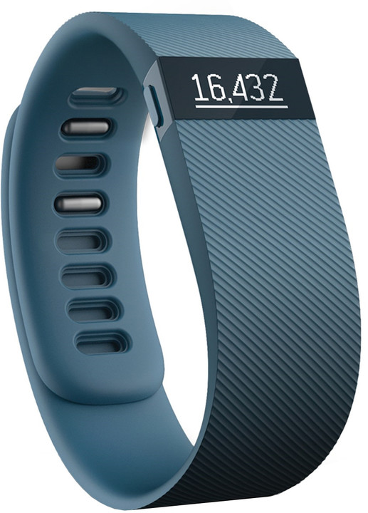 0012753_fitbit-fb404sll-charge-activity-and-sleep-wristband-slate.jpeg