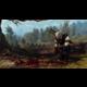 Zaklínač 3: Divoký hon - Edice Hra Roku (PC)