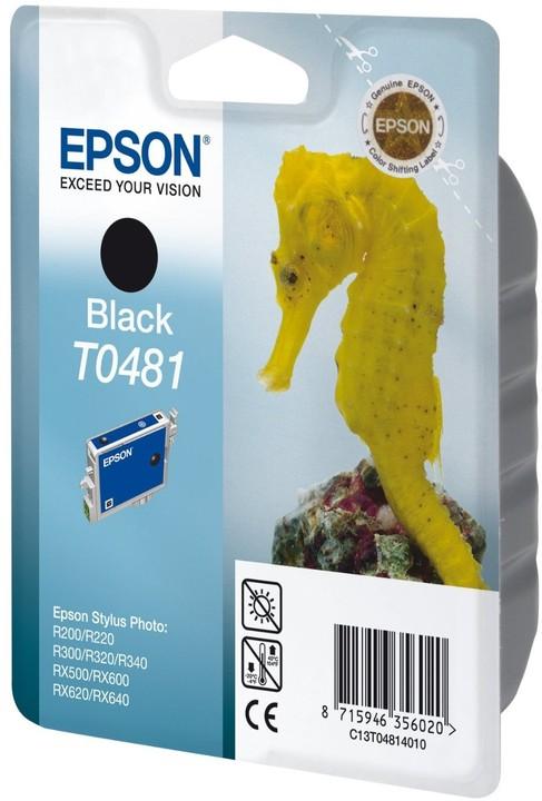Epson C13T048140, černá