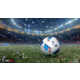 UEFA EURO 2016 Pro Evolution Soccer (PC)