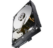 Seagate Constellation ES.3 - 2TB - ST2000NM0033