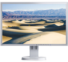 EIZO FlexScan EV2316WFS-GY - LED monitor 23""