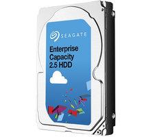 Seagate Enterprise - 1TB - ST1000NX0313