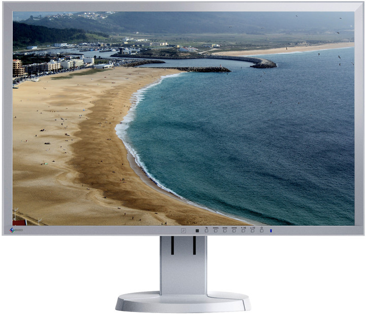 EIZO FlexScan EV2336WFS-GY - LED monitor 23""