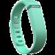 Fitbit příslušenství pro Flex náhradní pásek - Teal - Small