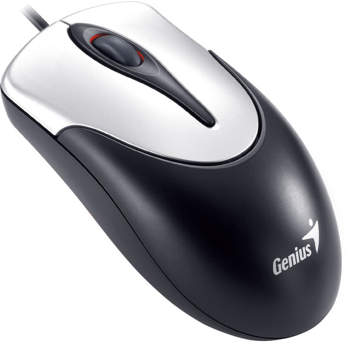 Genius NetScroll 100, USB, stříbrná/černá