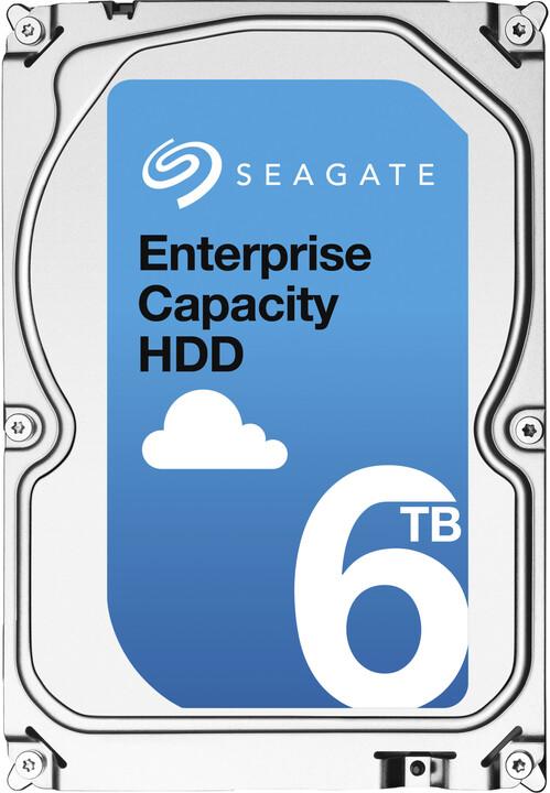 Seagate Enterprise Capacity - 6TB
