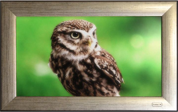 FrameXX Home 271 digitální fotoobraz, rám standard