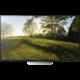 Sony KD-55XD8577 - 139cm  + Bezdrátový reproduktor Sony SRS-XB2 v ceně 2500 kč + Garance DVB-T2