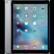 APPLE iPad Pro, 128GB, Wi-Fi, šedá