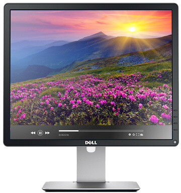 Dell Professional P1914S - LED monitor 19""