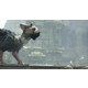 The Last Guardian - Collector's Edition (PS4)