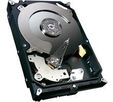 Seagate Cheetah 15K.7 - 600GB - ST3600057SS