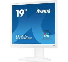 "iiyama ProLite B1980SD-W1 - LED monitor 19"""