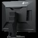 "EIZO EV2456-BK - LED monitor 24"""