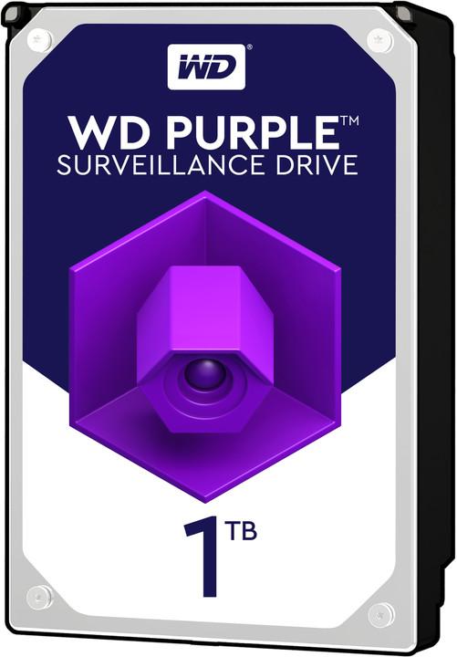 WD Purple (PURZ) - 1TB