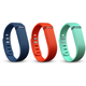Fitbit Flex Accessory Pack L