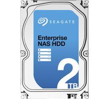 Seagate Enterprise NAS - 2TB - ST2000VN0001