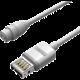 ROMOSS eUSB Cable (9c DC15-16V)