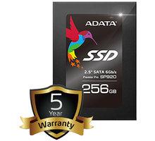 ADATA Premier Pro SP920 - 256GB - ASP920SS3-256GM-C