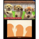 Nintendo 3DS, růžová + Nintendogs+Cats: Golden Retriever