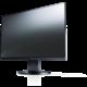"EIZO EV2455-BK - LED monitor 24"""