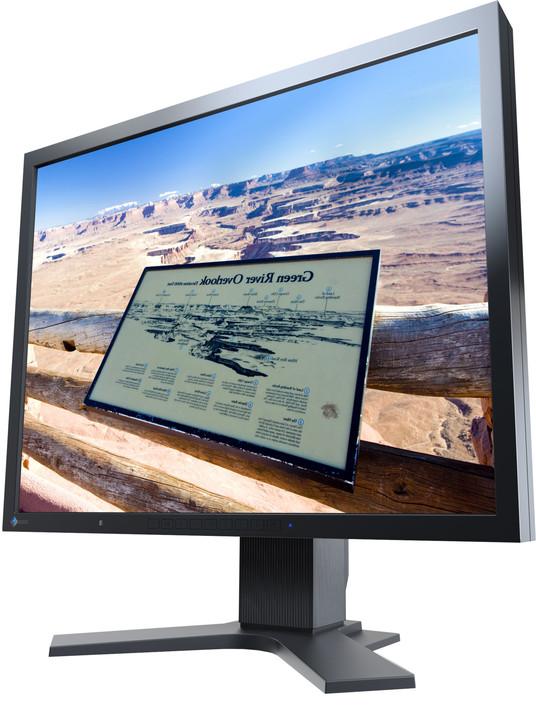 """EIZO S2133 - LED monitor 21"""""""