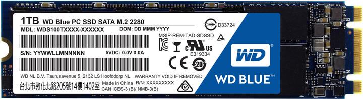 WDS100T1B0A_M2.jpg