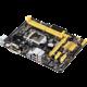 ASUS H81M-P PLUS - Intel H81