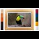 FrameXX Home 150 digitální fotoobraz, bílý se stříbrným rámem