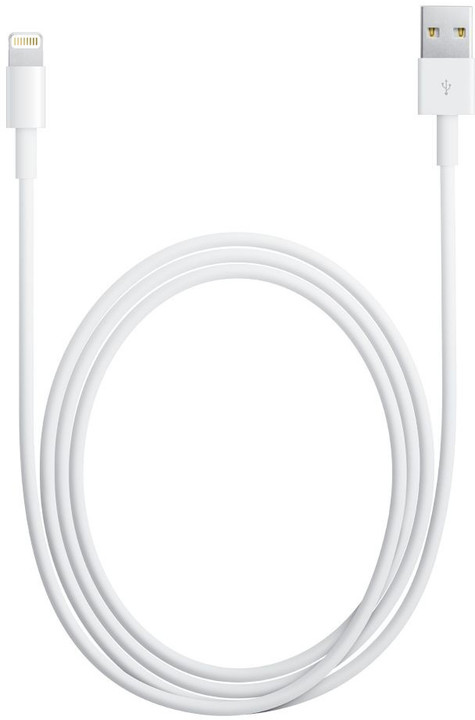 Apple Lightning to USB Cable, bulk