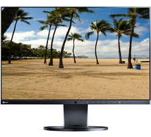 "EIZO EV2450-BK - LED monitor 24"""