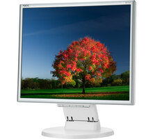 "NEC MultiSync E171M, bílá - LED monitor 17"" - 60003581"