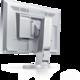 """EIZO FlexScan EV2316WFS-GY - LED monitor 23"""""""