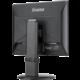 "iiyama ProLite B1980SD-B1 - LED monitor 19"""